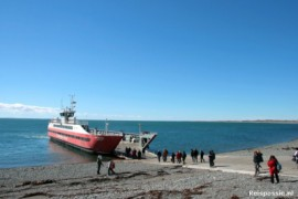 Van Ushuaia naar Punta (pinquin) Arenas