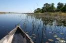 Onkovango Delta - Varen in de Mokoro