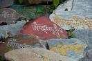 Dharamsala, manistenen langs de Kora.