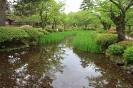 Kanazawa -<br />Kenroku-en Garden