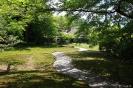 Nara - paadje in een<br />tuin