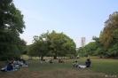 Tokyo - In het Shinjuku Gyoen park