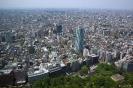 Tokyo - Uitzicht vanaf Tokyo Metropolitan Government Offices