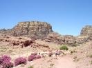 Petra - Ligt in een fraaie omgeving!