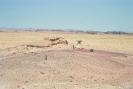 Wadi Rum - Ruig landschap