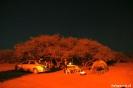 Onze campsite bij de<br />kokerbomen