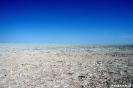 Etosha - Op de zoutvlakte