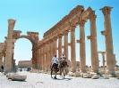 Palmyra - Kamelenrace door de hoofdstraat
