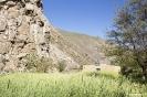 Gizev - Klein dorpje tussen de gewassen