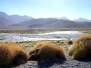San Pedro to Uyuni - Refugio Laguna Colorada