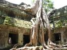 Ankor Wat - Overwoekerde tempels