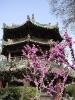 Xian - Mooie<br />plekje's in de oude<br />moslimwijk van Xian