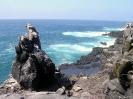 Galapagos - Ruige rotskust