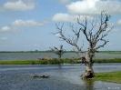 Mandalay - Vissers<br />bij de U-bein brug