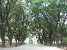Buenos Aires - in<br />het park