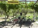 Mendoza - op de<br />fiets
