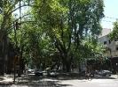 Mendoza - straatje