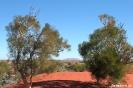 Uluru - Eerste blik op Uluru