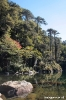 Pucon - parque<br />Huerquehue