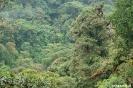 Reserva Santa Elena<br />- uitzicht op de<br />toppen